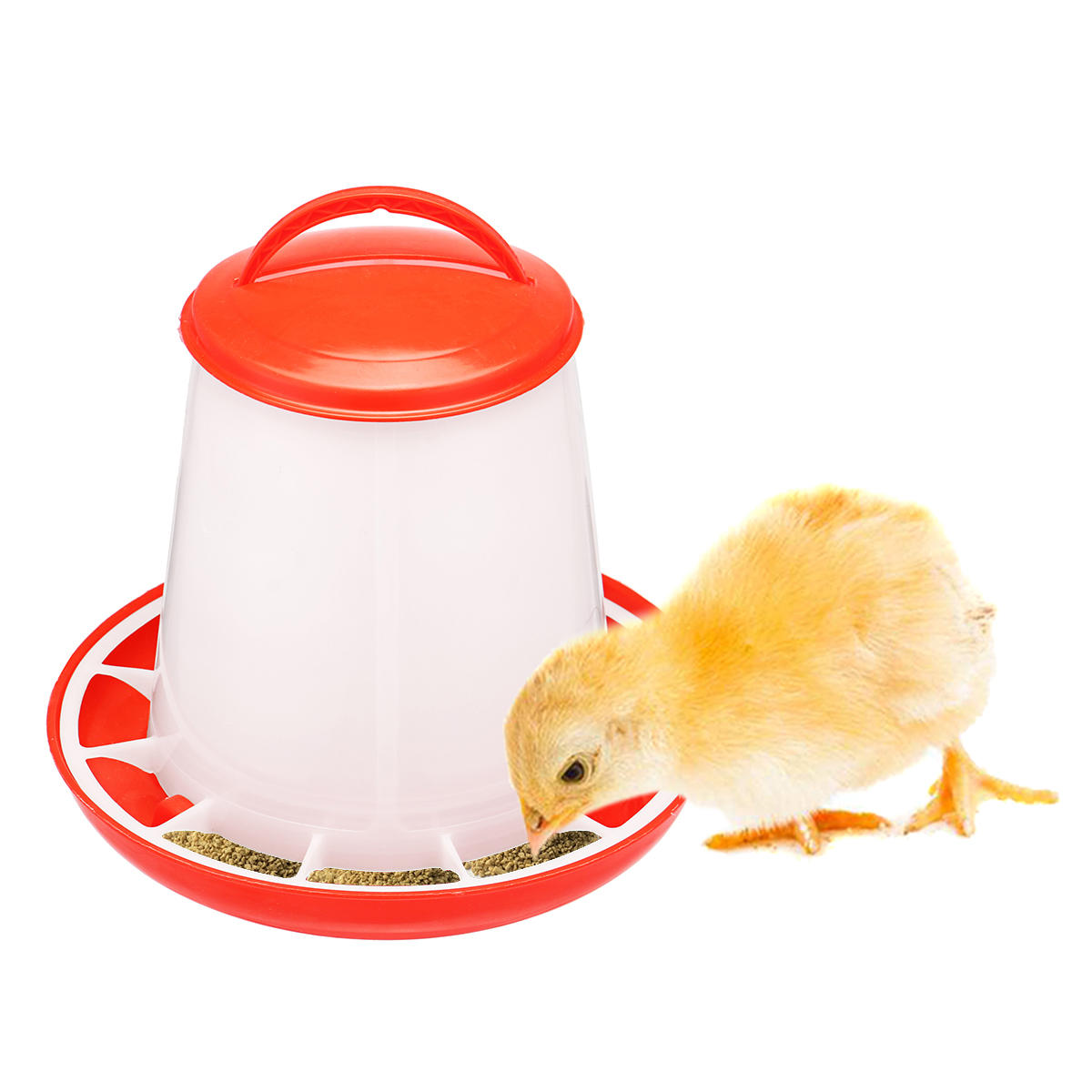 Chicken Feeder Drinker Bottles Poultry Feed Water Waterer Automatic