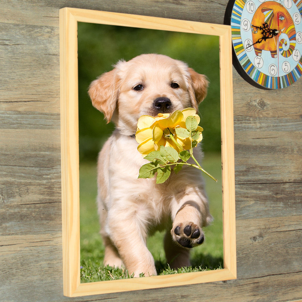 16 Inch Hanging Picture Frames Wood Photo Frame Photo Wall Home Wall ...