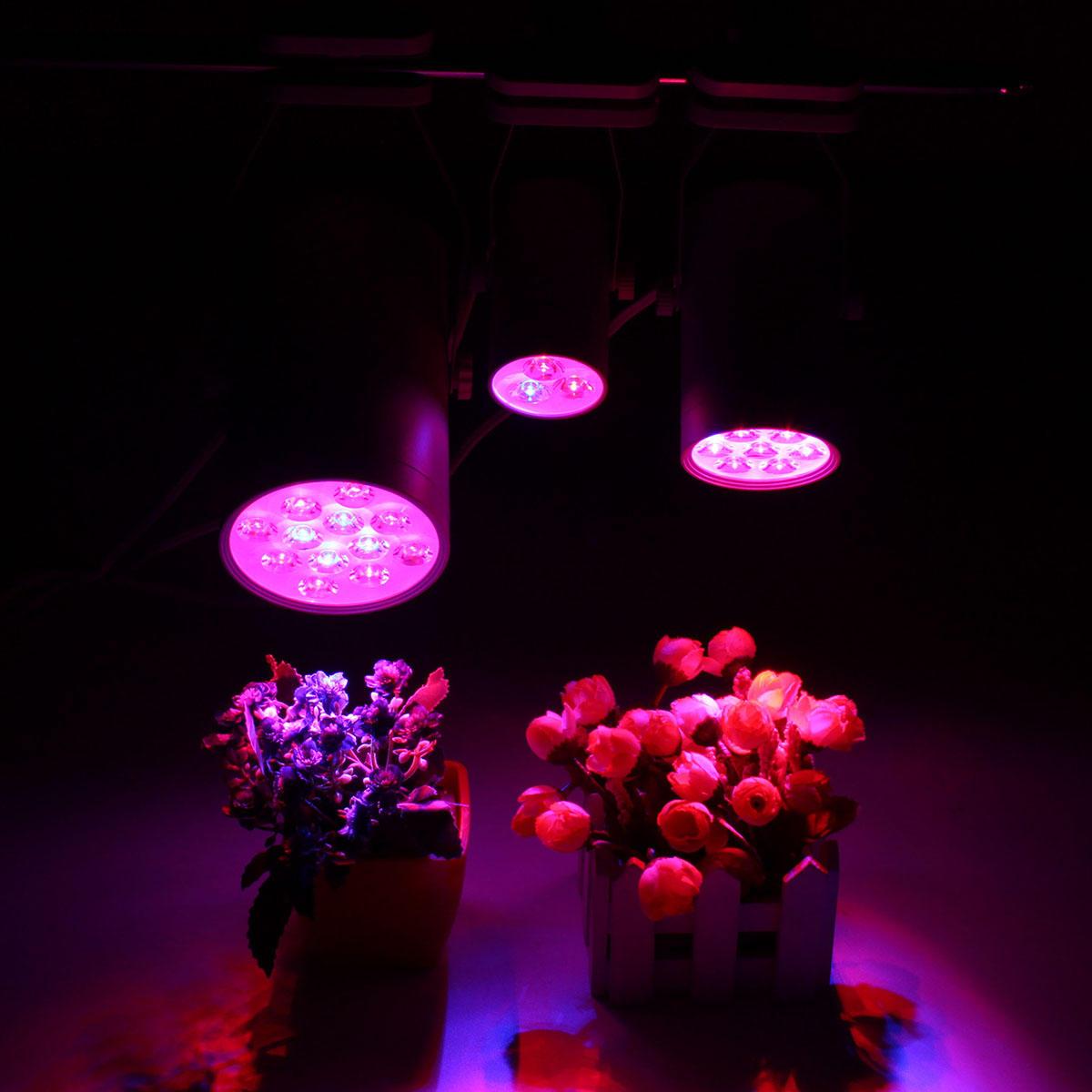 3W 7W 12W LEDプラント照明は、ランプ洪水補充光を成長させる
