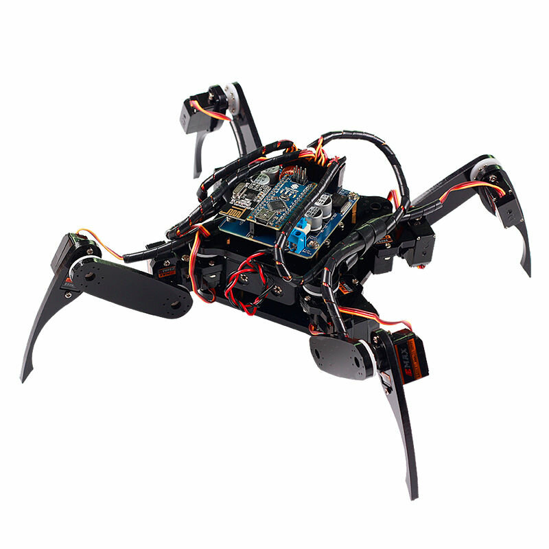 top 10 programmable robot