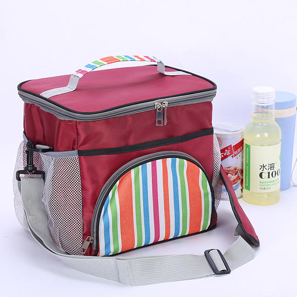 Food To Carr When Travelling: Portable Lunch Bag Thermal Insulated Snack Lunch Box Carry