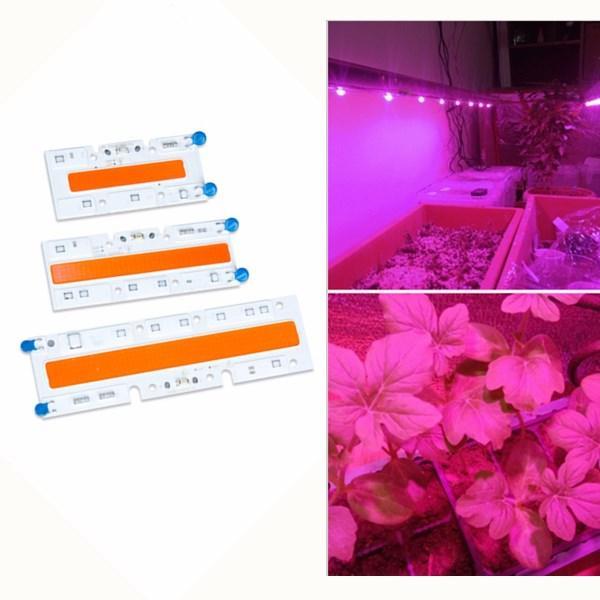 30W/50W/70W High Power Full Spectrum LED Grow COB Light Chip for Plants Vegetable AC110V/AC220V