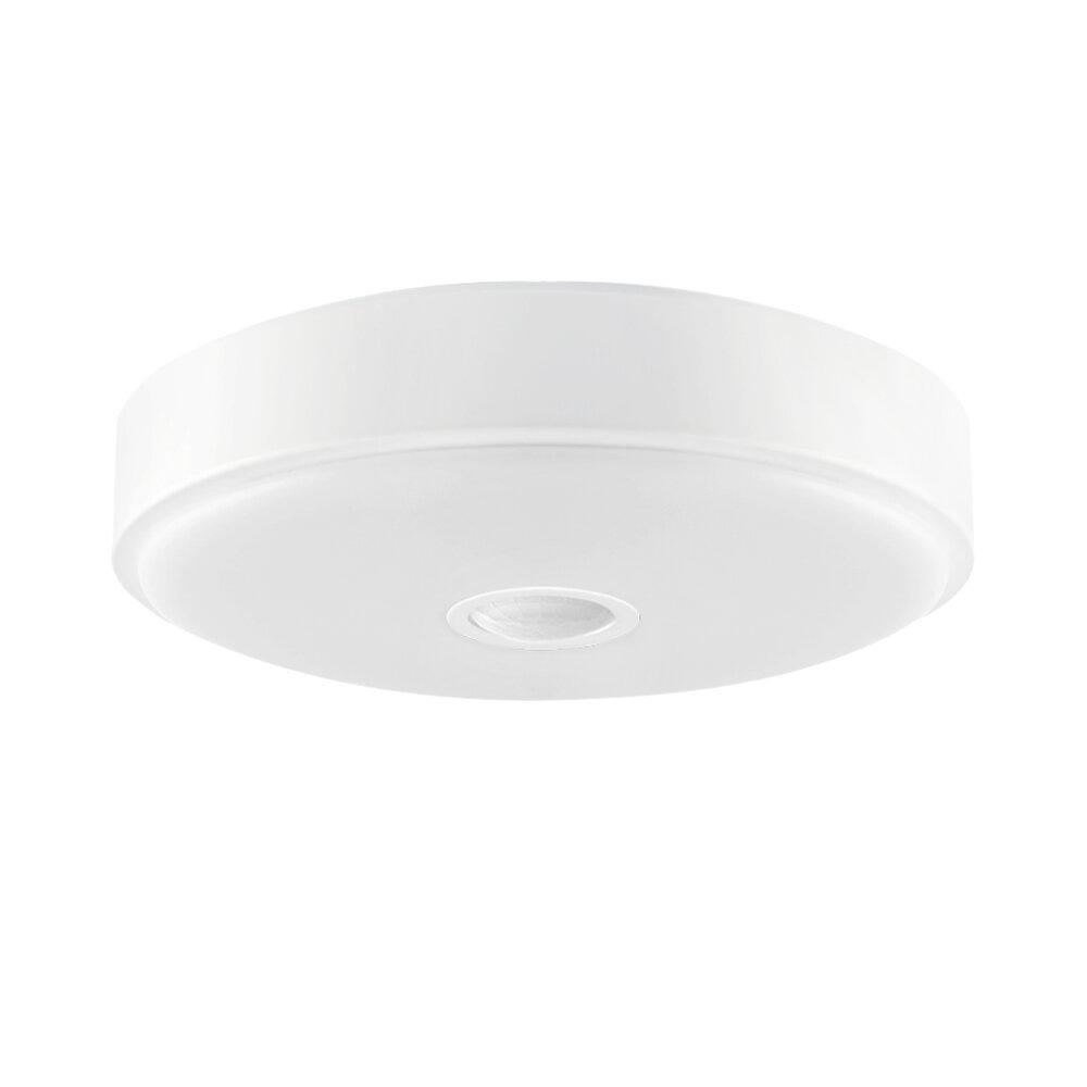 Xiaomi Yeelight YLXD09YL 10W Ceiling Light