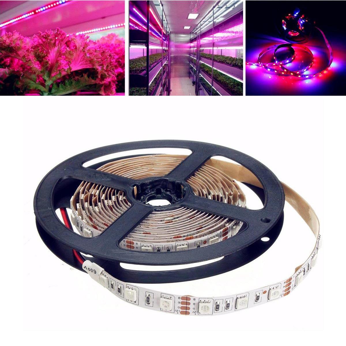 1M/2M/3M/4M/5M SMD5050 Non-Waterproof LED Grow Lights Full Spectrum Plant Strip Lamp DC12V