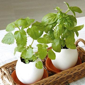 크리 에이 티브 DIY 미니 행운의 달걀 공장 사무소 바탕 화면 홈 장식 화분