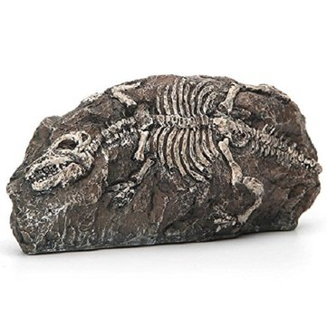 Yani Fish Tank Ornament Aquarium Dinosaur Fossil Resin Cave Landscaping Decoration