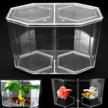 Extra Large Aquarium Baby Fish Tank