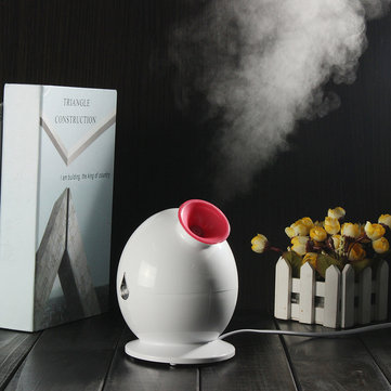 Colorful Q Type Nano Ion Hot Steam Beauty Instrument Face Humidifier