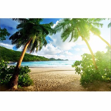 7x5ft Seaside Beach Summer Theme Photography Vinyl Backdrop Studio Background 2.1m x 1.5m
