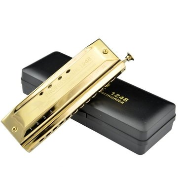 Swan 12 Holes 48 Tones Chromatic Gold Color Laser Proceeded Board Harmonica Music Musical Instrument