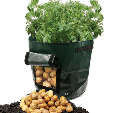 Graden 50L Large Capacity Potato Grow Planter PE Container Vefetable Bags Taro Sweet Tomato Pouch With Window