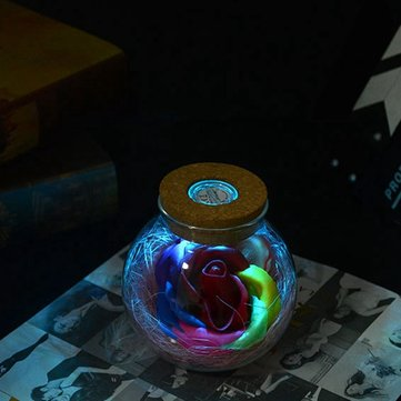 Creative Romantic Remote LED Flower Wish Bottle Light Lamp Holiday Lover Gift