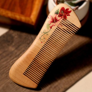 Hand Painted Mahogany Comb Hairbrush Chic Anti-Static Smooth Massage Head