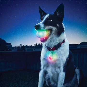 Yani Pet Dog Training Electronic LED 7 Color Flashing Luminous Dog Teeth Grinding Ball Glitter Interactive Toy