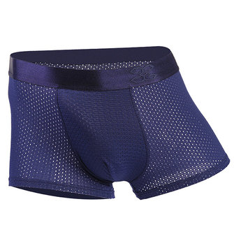 Ice Silk Mesh Breathable U Convex Smooth Soft Boxers Briefs
