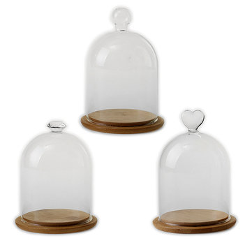 90mm Glass Display Dome Clothe Bell Jar Flower Preservation Vase with Wooden Base