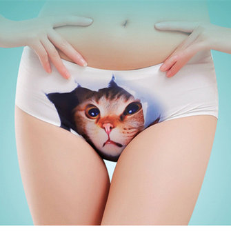 Plus Size Women 3D Pussy Panties Cute Cat Dog Animal Modal Soft Seamless Underwear Briefs