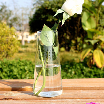 Cylinder Shaped Hydroponic Plants Glass Bottle Vase Home Garden Wedding Party Decoration