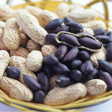 Egrow 10Pcs/Pack Black Peanut Seeds Organic Fruit Vegetable Home DIY Snacks Plants Seeds