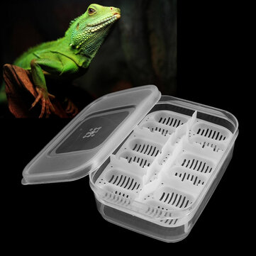 12 Reptiles Eggs Incubator Tray Gecko Snake Bird Amphibians Hatching Case Breeding Tools Box