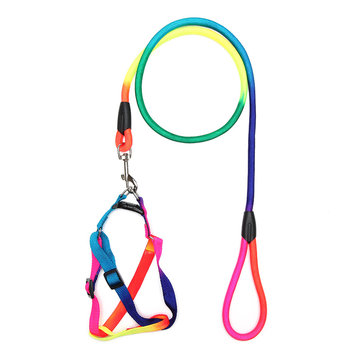 Yani HG-PC2 Pet Dog Colorful Belt Leash Attractive Cool Nylon Collar Adjustable Dog Cat Belt