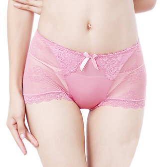 Mid Waist Transparent Lace Seamless Full Briefs
