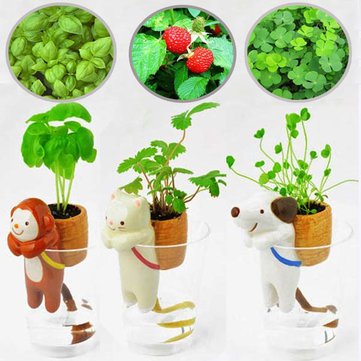 Ceramic Animal Tail Absorbent Indoor Potted Plants Small Potting