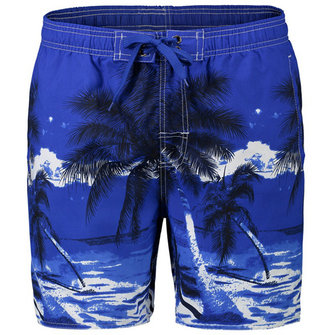 Mens Summer Beach Vacation Quick Dry Coconut Trees Printing Hawaiian Board Shorts