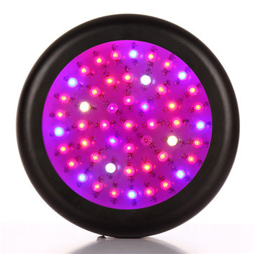 150W Full Spectrum 50 LED Grow Light for Garden Flowering Hydroponics System AC85-265V