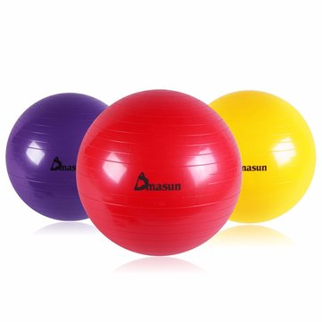55CM Sports Fitness Yoga Pilates Balance Ball For Weight Loss Slimming Exercise Training