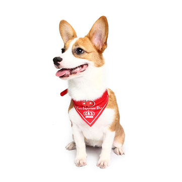 Yani HG-PLJ1 Pet Dog Red Imperial Crown Adjustable Collars Pet Cool Decoratoive Towel Pet Drcoration