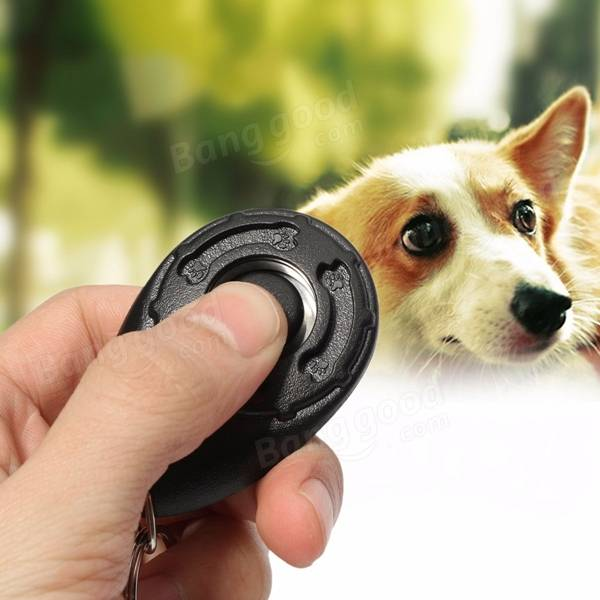 Black Pet Dog Puppy Click Clicker Training Trainer Obedience Aid Teaching Tool
